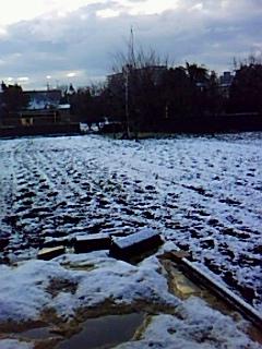 お~お~!....初雪だ!_b0137932_19421734.jpg