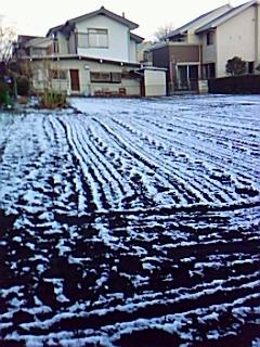 お~お~!....初雪だ!_b0137932_2065734.jpg