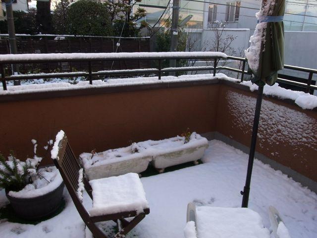 初降雪_f0209434_21362133.jpg