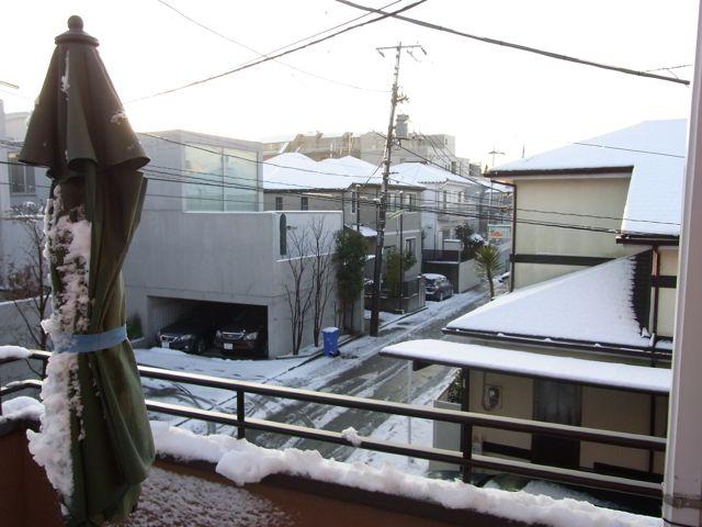 初降雪_f0209434_21374267.jpg