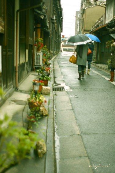 雨なら雨で・・・_d0147742_20392100.jpg