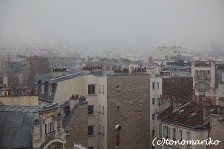 大きな激しい雪・雪・雪_c0024345_14143227.jpg