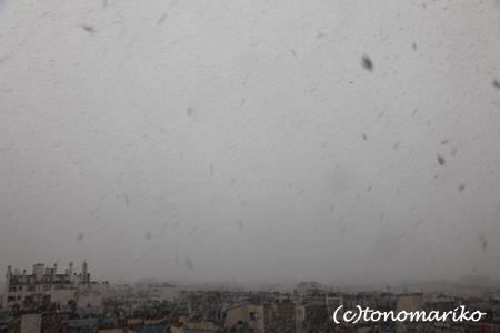 大きな激しい雪・雪・雪_c0024345_14145520.jpg