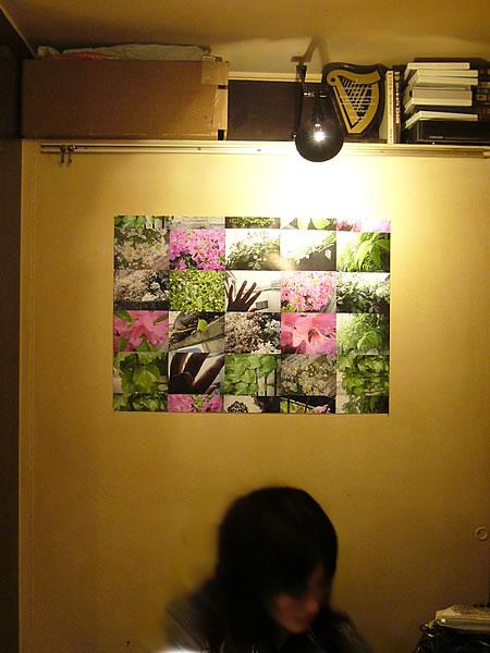 更新情報♪_c0069047_14262367.jpg