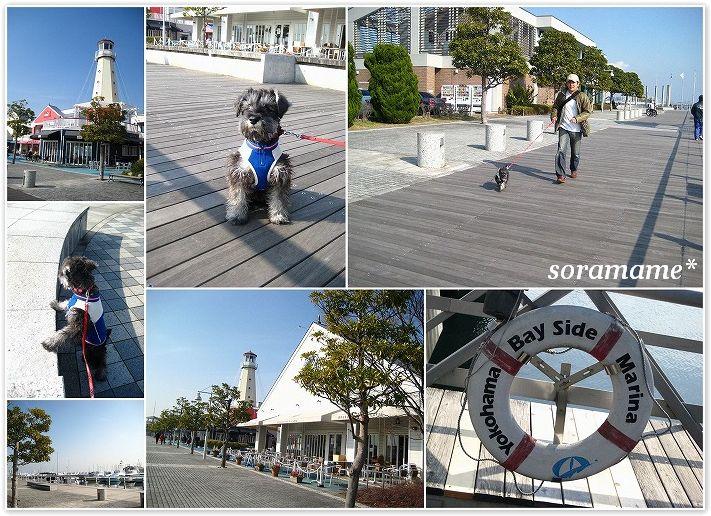 横浜ベイサイド。_c0180949_8415669.jpg