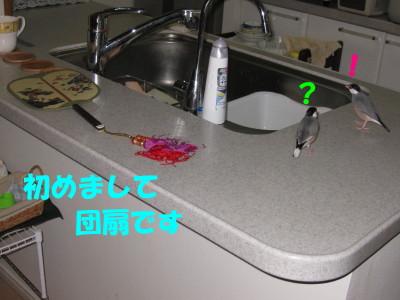 b0158061_211137.jpg