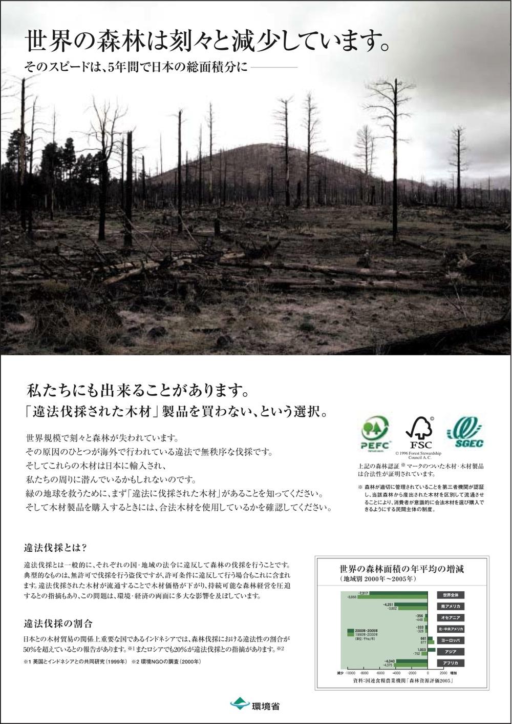世界の森_f0053164_10111435.jpg