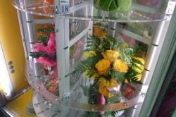 プラハの空港にお花の自動販売機が・・・_c0182100_21155667.jpg