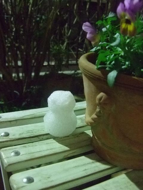 オークリーフ(小さな雪だるま)_f0049672_13144376.jpg