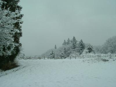 ■10.2.3~雪解けず_a0157274_10164830.jpg