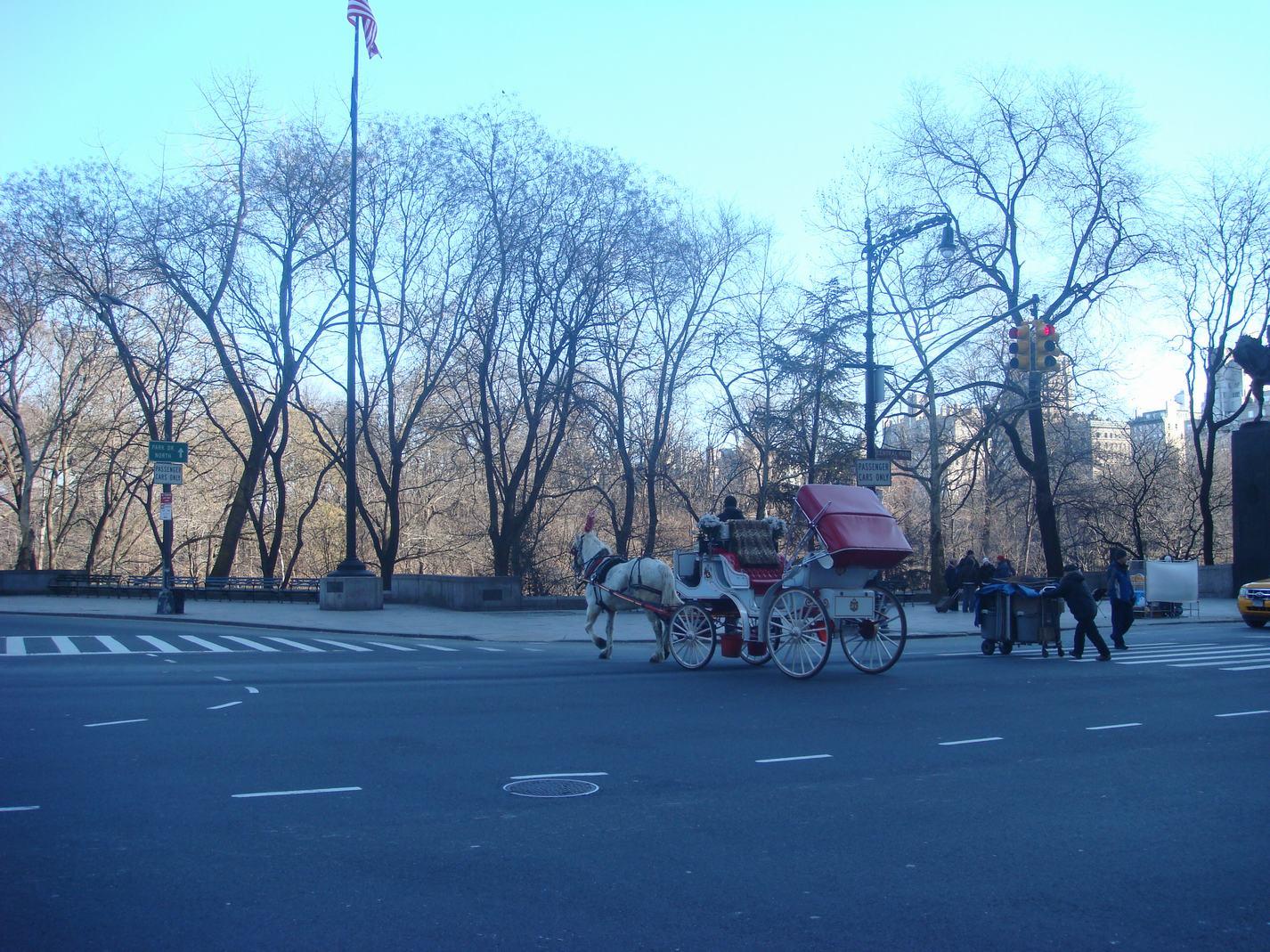 ニューヨークの街の中の散歩、_d0100880_23102367.jpg