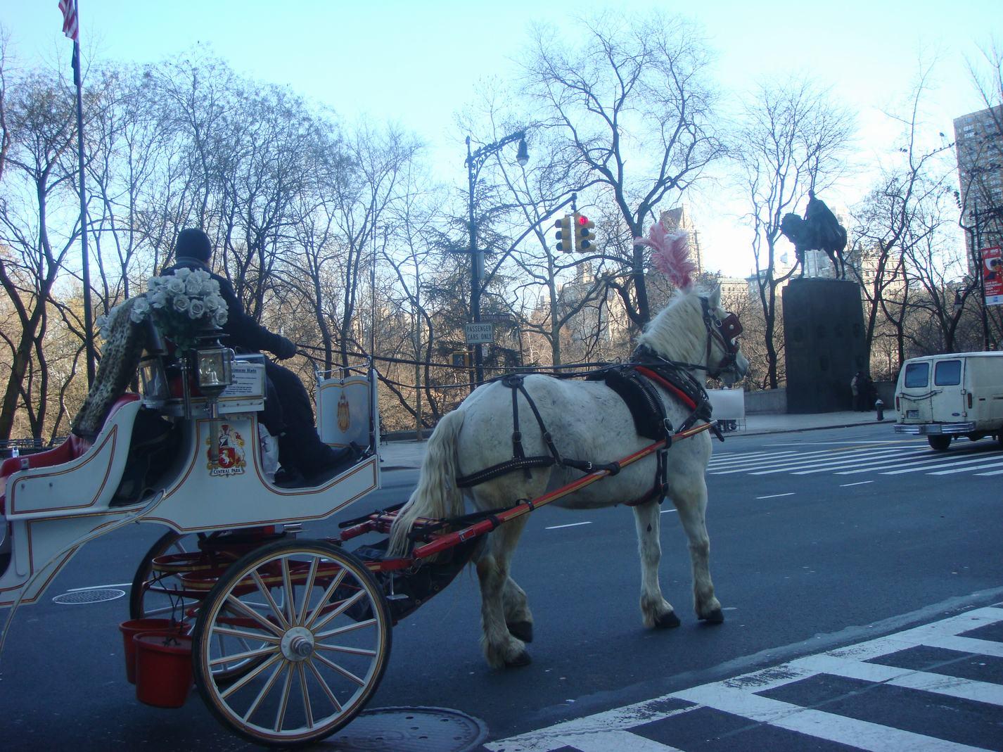 ニューヨークの街の中の散歩、_d0100880_2310739.jpg
