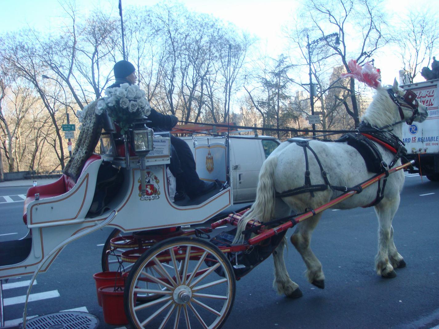 ニューヨークの街の中の散歩、_d0100880_2394391.jpg