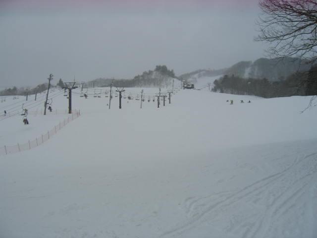 今日も雪☆_a0140584_153345.jpg