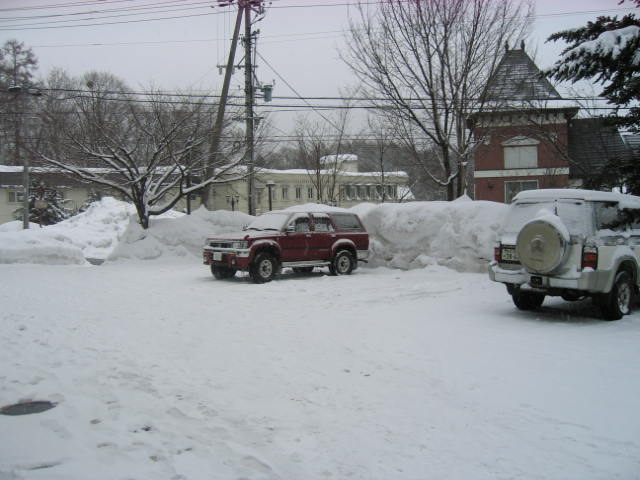 今日も雪☆_a0140584_154524.jpg