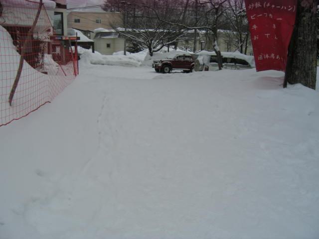 今日も雪☆_a0140584_1551192.jpg