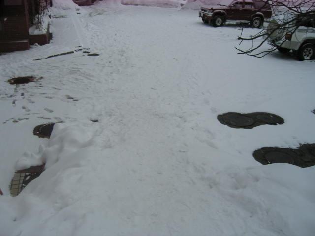 今日も雪☆_a0140584_1553564.jpg