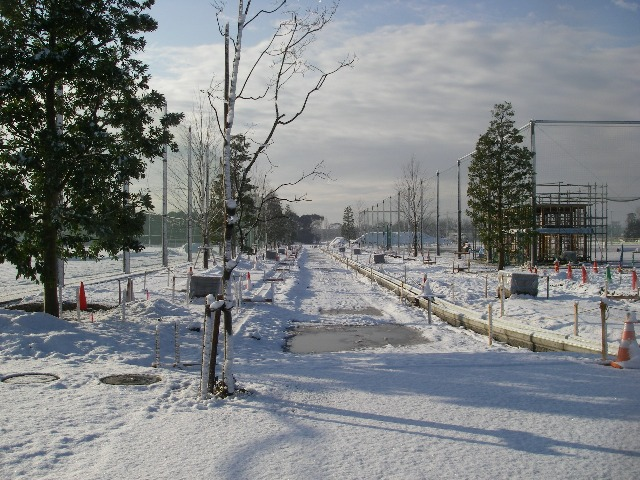 雪かき_b0172896_21434887.jpg