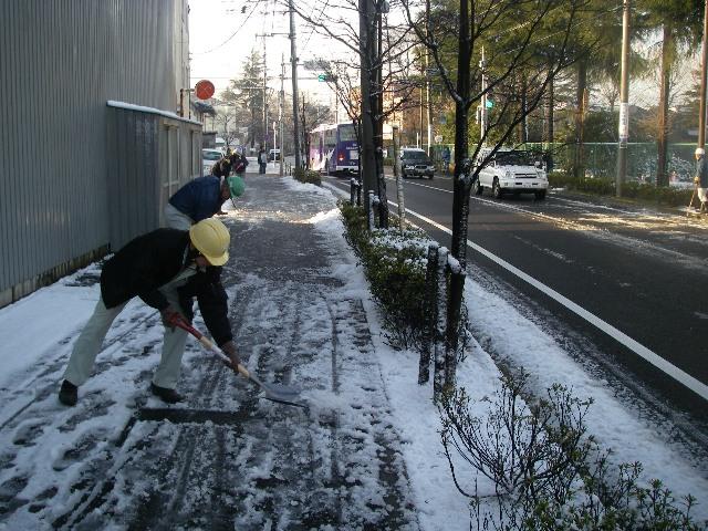 雪かき_b0172896_21503685.jpg