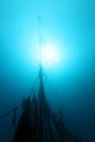 2月4日海は荒れ荒れ・・風はヒュー_c0070933_2225170.jpg
