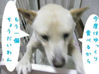 b0151748_1364684.jpg