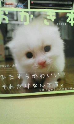 b0001453_2012450.jpg