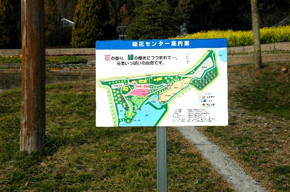 和歌山県植物公園緑花センター _b0093754_23462778.jpg