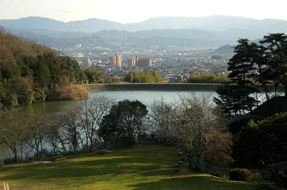 和歌山県植物公園緑花センター _b0093754_23465365.jpg