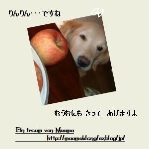 e0185787_1422897.jpg