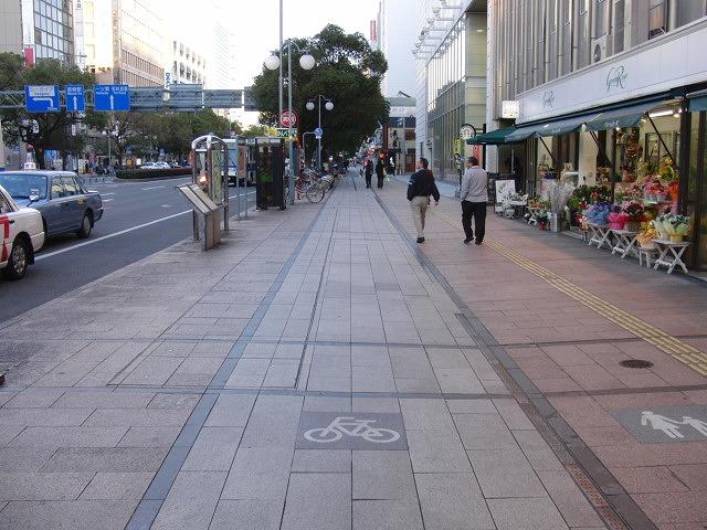 自転車専用レーンがずいぶん前からある?街・宮崎市_f0141310_073256.jpg