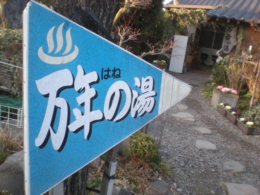 森の妖精~_a0125419_2118517.jpg