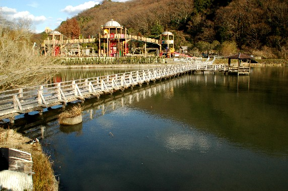 和歌山県植物公園緑花センター _b0093754_23511829.jpg