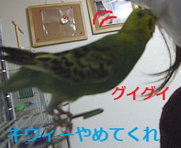 f0196665_23593559.jpg
