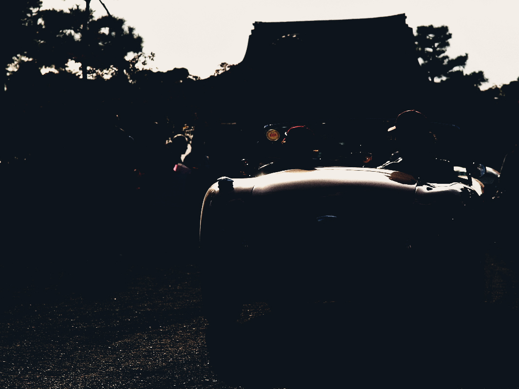 RALLY NIPPON TOKYO-KYOTO 2009 仁和寺4  _f0021869_22182199.jpg