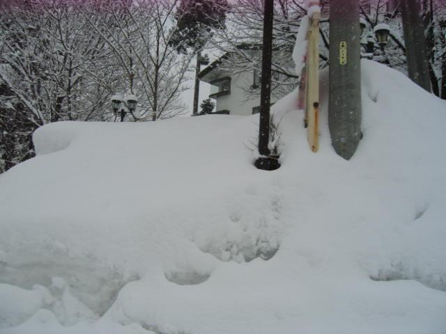 ほいほい また雪_a0140584_10151876.jpg