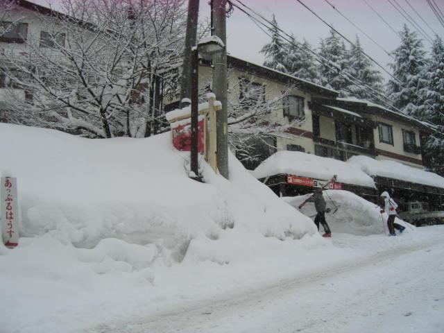 ほいほい また雪_a0140584_9585278.jpg