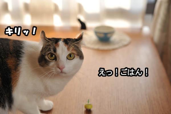 b0141397_11445150.jpg