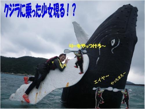 b0089616_1685525.jpg