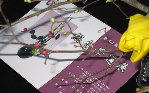 2010 八戸市総合華道展_c0165824_18515956.jpg