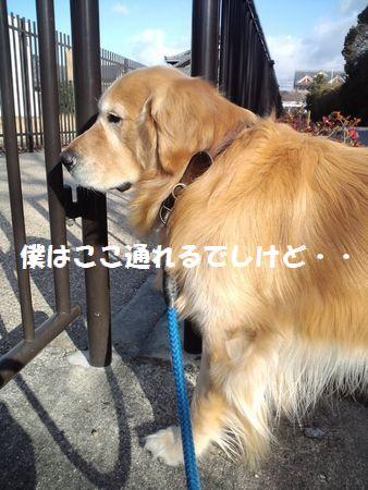 b0127531_2214113.jpg