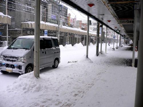 <大雪です!>_c0197734_15284399.jpg