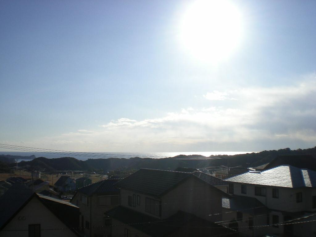 2010年2月6日(土)さぶ~い!夏が恋しい!_f0060461_1355485.jpg