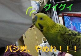 f0196665_02456.jpg