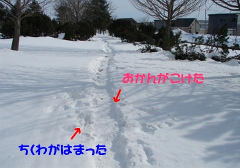 f0195891_15192425.jpg
