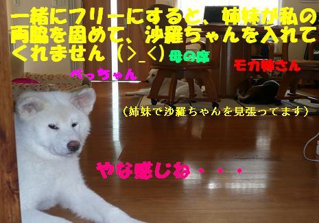 f0121712_8251114.jpg