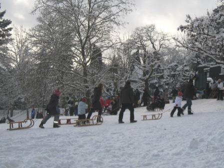 雪、雪、雪_f0116158_1054263.jpg