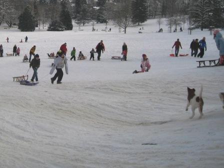 雪、雪、雪_f0116158_10544032.jpg