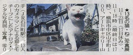 第1回 猫・ねこ 写真展 が東京新聞で紹介されました Art Gallery 山手 横浜_f0117059_176666.jpg