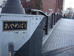 お散歩、でも風強い (大田区)_d0132289_18551186.jpg