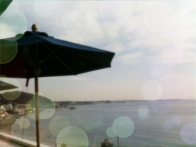 b0110403_13561167.jpg
